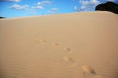 Het lopen alleen in de woestijn Royalty-vrije Stock Fotografie