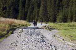 Het lopen in bergen Royalty-vrije Stock Foto
