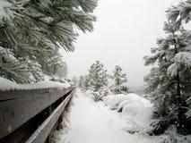 Het lopen bij Meer Tahoe in de sneeuwstorm royalty-vrije stock foto's