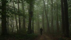 Het lopen in bos stock video