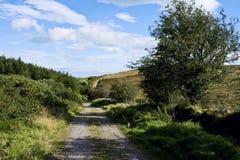 Het lopen in Comeraghs Stock Fotografie