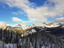 Het lopen in de bergen in het midden van de bergen tussen pijnbomen en sparren Stock Foto's
