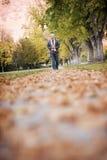 Het lopen in de bladeren stock fotografie