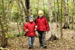 Het lopen in de herfstbos Royalty-vrije Stock Fotografie
