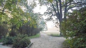 Het lopen in de herfstpark stock videobeelden