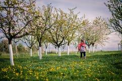 Het lopen in de lentetuin Royalty-vrije Stock Afbeeldingen