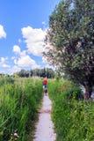 Het lopen in de polder Stock Foto