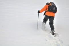 Het lopen in de sneeuw Stock Foto's