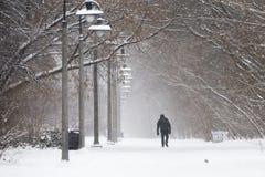 Het lopen in de sneeuw Royalty-vrije Stock Fotografie