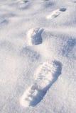 Het lopen in de sneeuw Royalty-vrije Stock Afbeeldingen