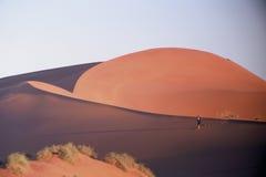 Het lopen in de woestijn Stock Fotografie