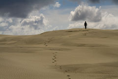 Het lopen in de woestijn stock afbeelding