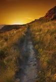 Het lopen in de zonsondergang Royalty-vrije Stock Afbeeldingen