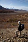 Het lopen in Denali royalty-vrije stock afbeelding