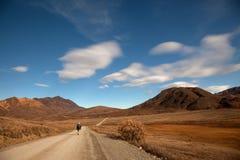 Het lopen in Denali royalty-vrije stock fotografie
