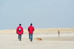 Het lopen dichtbij de kust royalty-vrije stock afbeelding