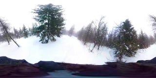 Het lopen in diep de winterbos - 360 Virtuele Werkelijkheid Eerste Person View stock videobeelden