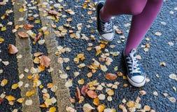 Het lopen door de herfststraat Royalty-vrije Stock Afbeeldingen