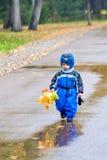 Het lopen door het de herfstpark Royalty-vrije Stock Fotografie