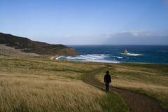 Het lopen door het Landschap van Nieuw Zeeland royalty-vrije stock foto's