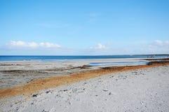 Het lopen door het Westelijke Pomerania-Nationale Park van het Lagunegebied Stock Foto's