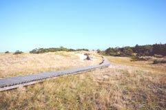 Het lopen door het Westelijke Pomerania-Nationale Park van het Lagunegebied Stock Afbeeldingen