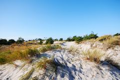 Het lopen door het Westelijke Pomerania-Nationale Park van het Lagunegebied Royalty-vrije Stock Foto's