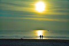 Het lopen en het spreken op het strand met de hond op een zonnige de herfstdag Stock Foto's