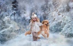 Het lopen in het de winterpark Stock Foto's