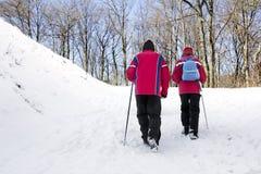Het lopen in het sneeuwbos Royalty-vrije Stock Afbeelding