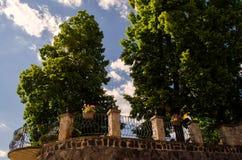 Het lopen in het stadspark stock afbeeldingen