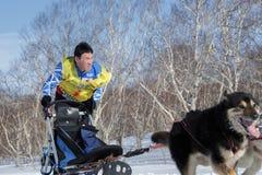 Het lopen Kamchatka musher Vitaly Tishkin De Sleehond die van Kamchatka Beringia, Russische Kop rennen Sleehond het Rennen sneeuw Stock Foto