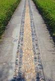 Het lopen manier in tuin Royalty-vrije Stock Foto