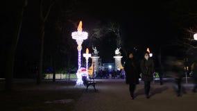 Het lopen Menigte bij Nacht stock video