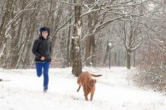 Het lopen met de hond Royalty-vrije Stock Foto's