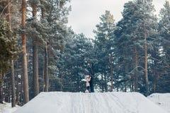 Het lopen met hond in de winter het houdende van paar loopt in sneeuw stock fotografie
