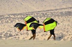 Het lopen met hun vliegers Stock Fotografie