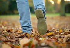 Het lopen met laarzen op de herfstbladeren Royalty-vrije Stock Foto's