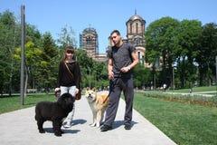 Het lopen met puppy Royalty-vrije Stock Foto's