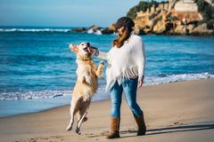 Het lopen met uw hond op het strand royalty-vrije stock foto's