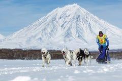 Het lopen musher Ryabuhin Denis De Sleehond die van Kamchatka Beringia rennen Royalty-vrije Stock Fotografie