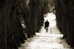Het lopen op begraafplaats Stock Foto's