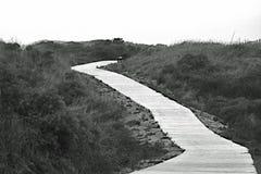 Het lopen op een lange weg in de duinen in de herfst Royalty-vrije Stock Afbeeldingen