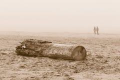 Het lopen op het strand Stock Foto