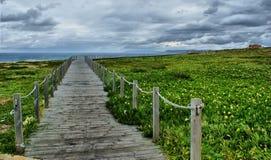 Het lopen op het strand aan oneindigheid Royalty-vrije Stock Afbeeldingen