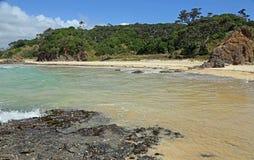 Het lopen op Matapouri-strand Stock Foto