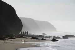Het lopen op nevelig strand Stock Afbeelding