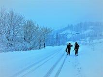 Het lopen op sneeuw royalty-vrije stock afbeelding