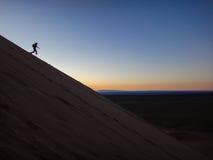 Het lopen op zandduinen Stock Fotografie