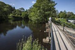 Het lopen over brug bij Etherow-het Park van het Land Stock Foto